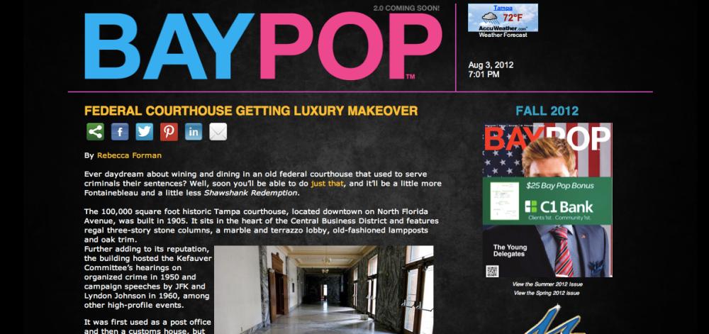 Bay Pop Magazine (4/6)